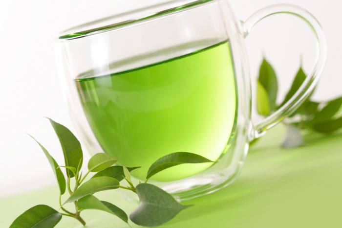 Green Tea Introduction